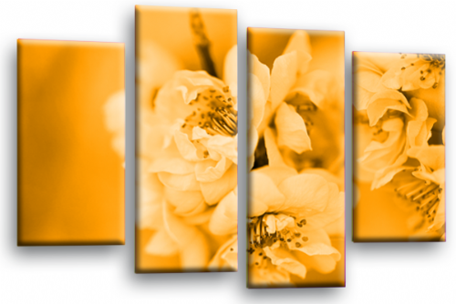 Spring Floral Flower Wall Art Picture Orange Grey Blossom Print
